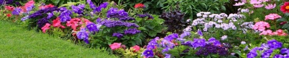 Impresa di giardinaggio