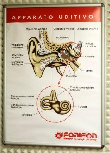 Il centro risolve problemi all'apparato uditivo con protesi ed apparecchi.
