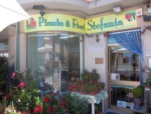 piate e fiori