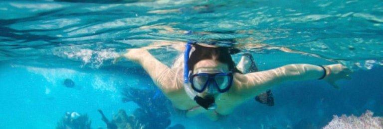 diving isola Elba