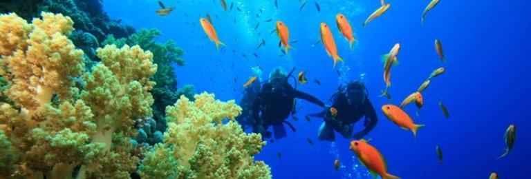immersione in Bali