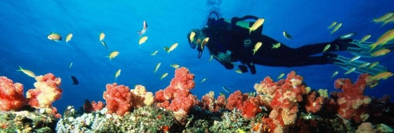 immersione in mozambico