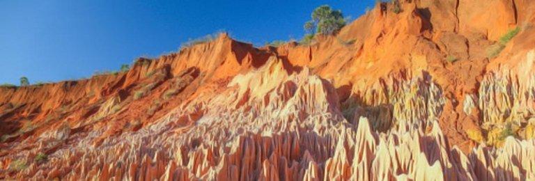 Tour Madagascar