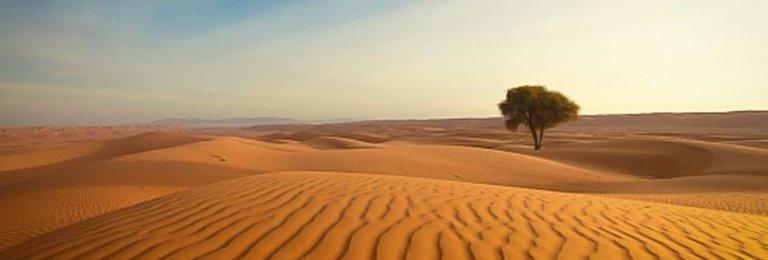 Oman Il tour del deserto