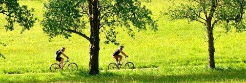 Biking in Italia