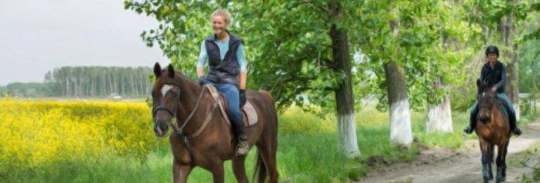 Equitazione in Italia