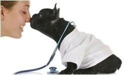 analisi cliniche cani