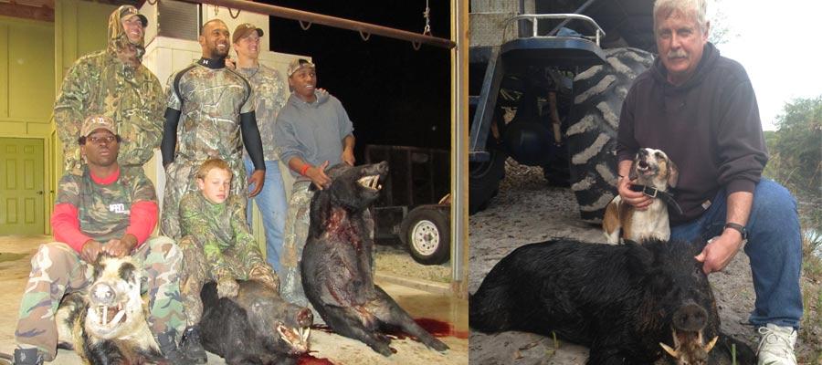 wild boar hunting, Florida