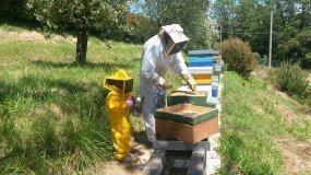 Un uomo e un bambino in tuta da apicoltore vicino a dei favi di api