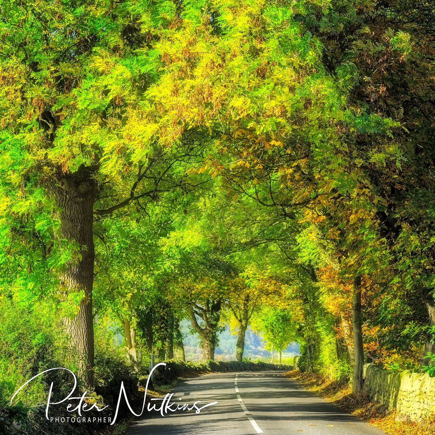Autumn Road from Ashover