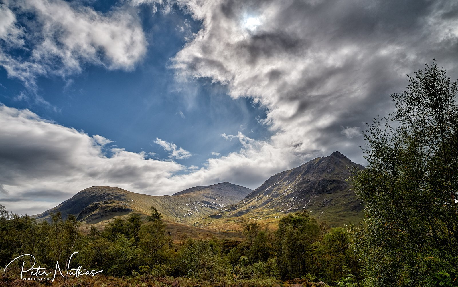 A cloak of sunlight is drawn across the entrance to the glen.