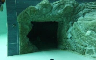 piscina subacquea