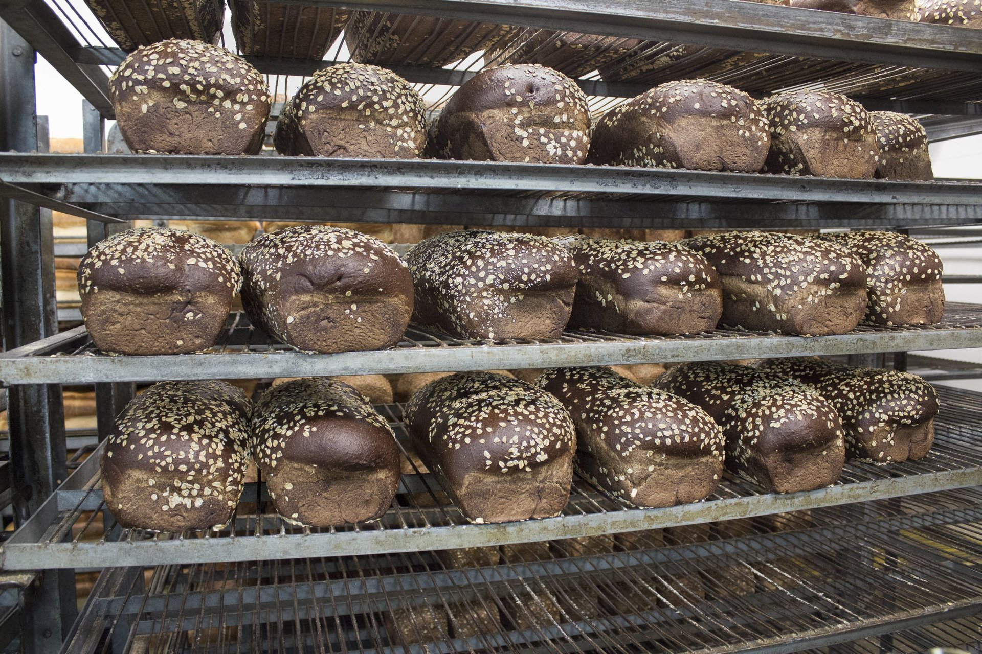 Oasis Breads Wholesale bakery