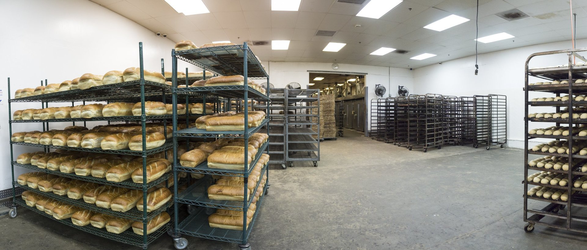 oasis breads san diego