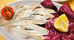 piatti di pesce, specialità di pesce, antipasti di pesce, menù di pesce, pesce fresco,
