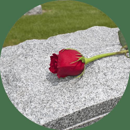 rosa rossa appoggiata su una tomba