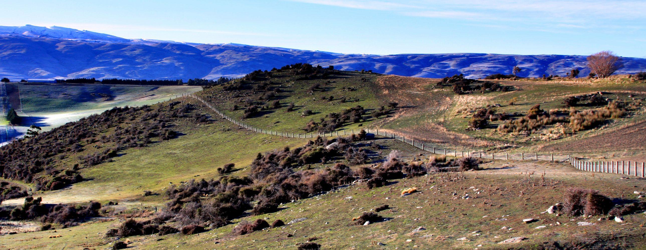 Fencing Otago - Samuel Fencing