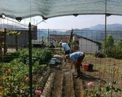 agricoltura cinque terre