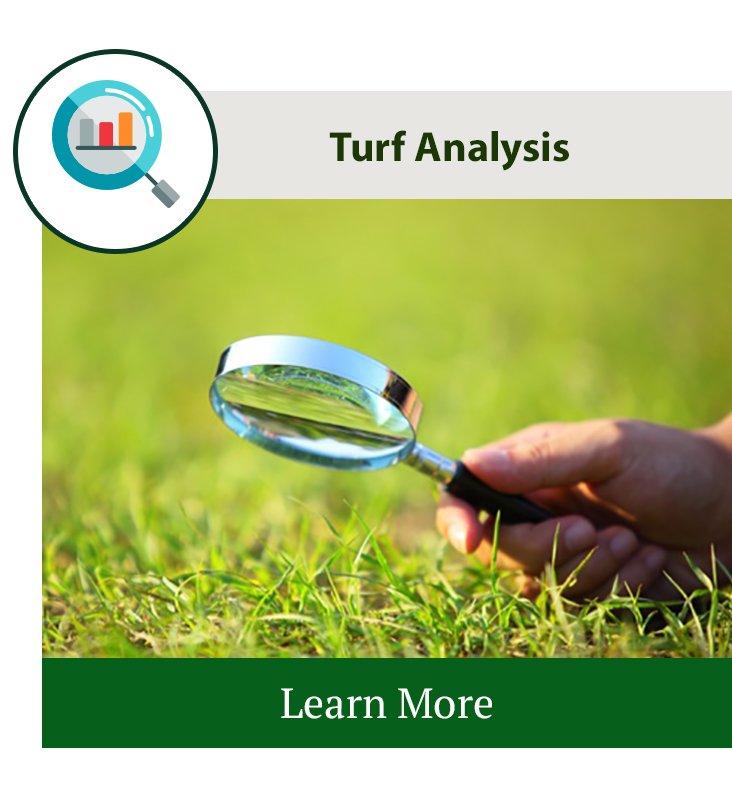Lawn Turf Analysis