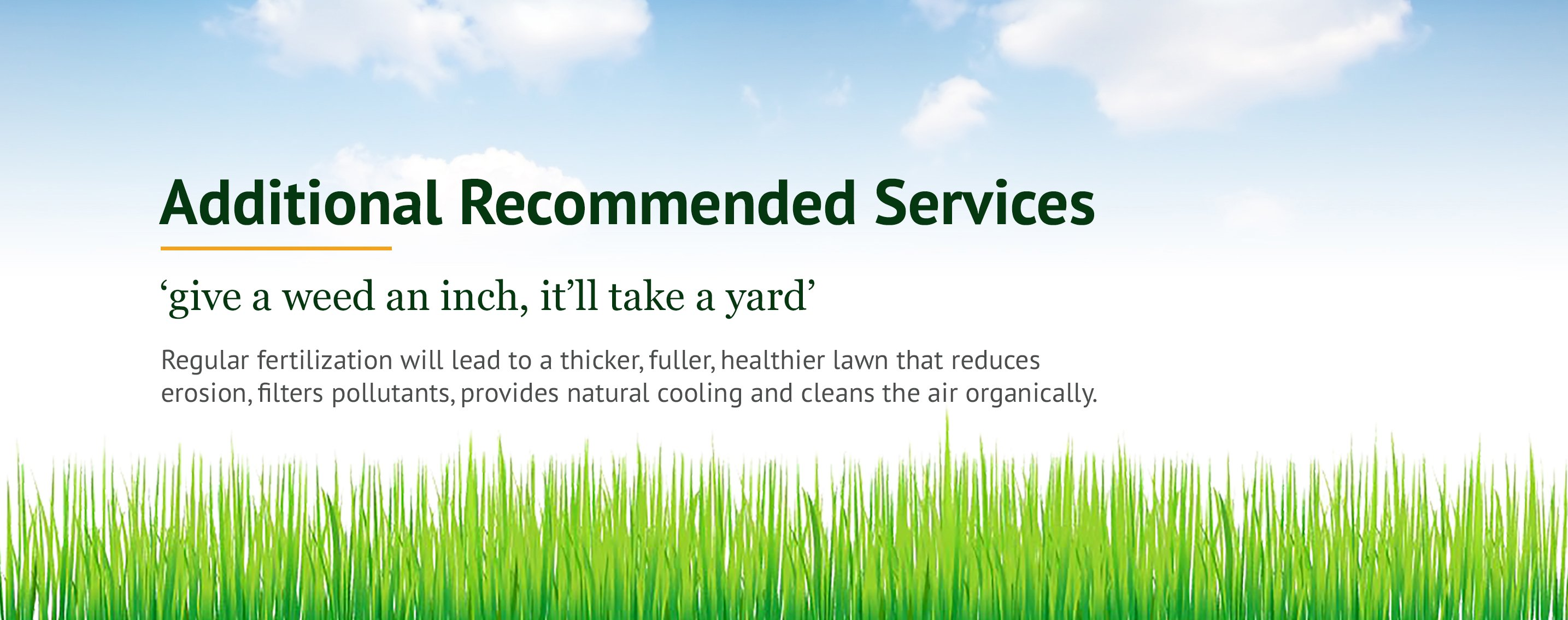 Fertilizing Services NJ, Fertilizing Companies NJ
