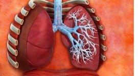 spirometria, esami apparato respiratorio, malattie apparato respiratorio