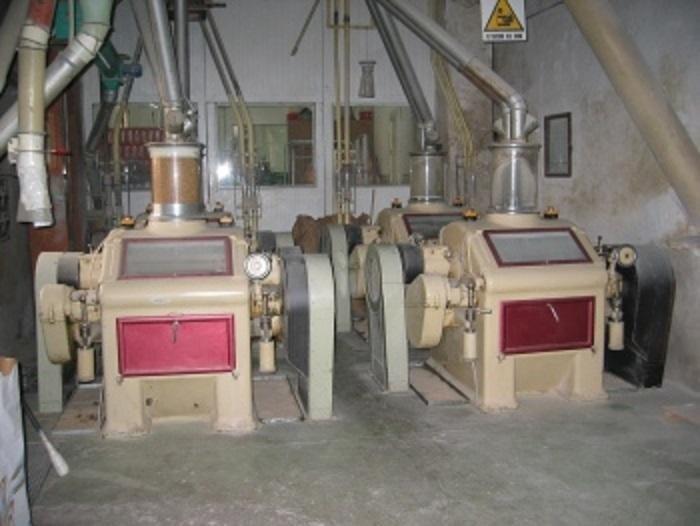 produzione farina di tipo 1