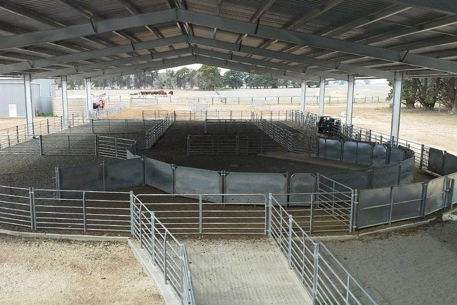 Stockyards And Sheep Yards Design