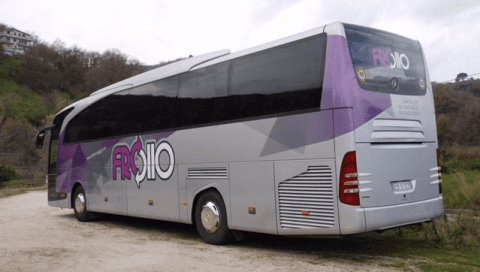 Froiio coaches