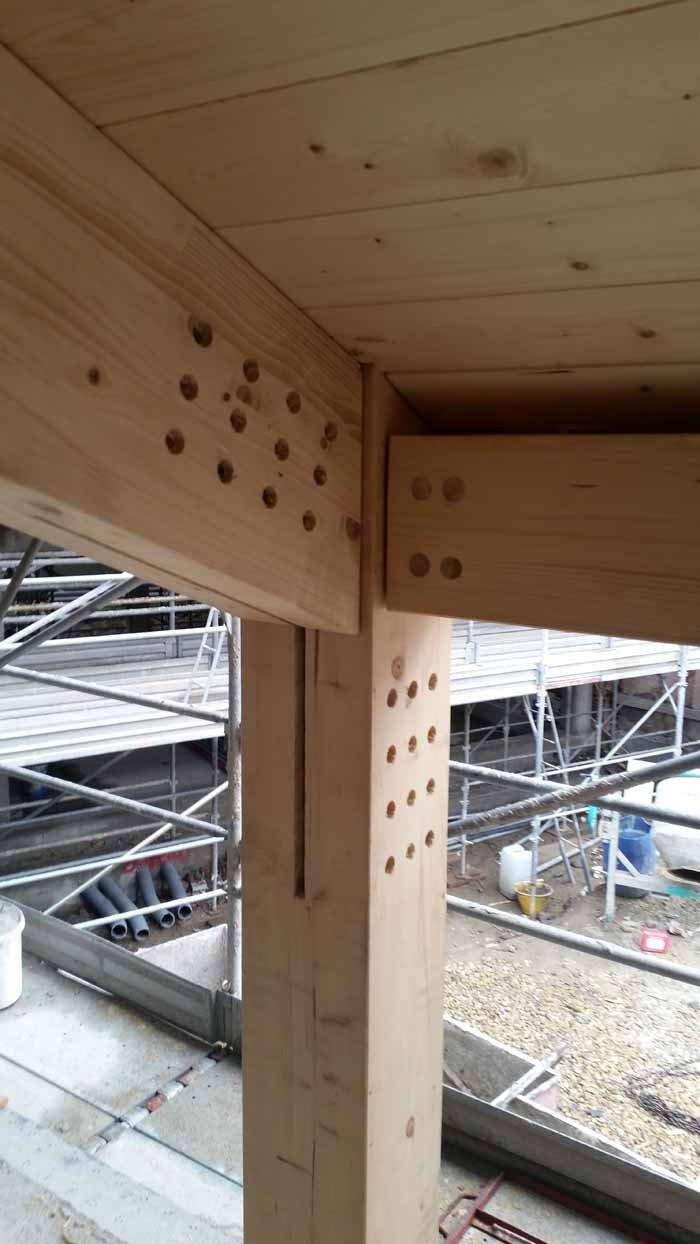 gamba e anglorae soffitto in legno