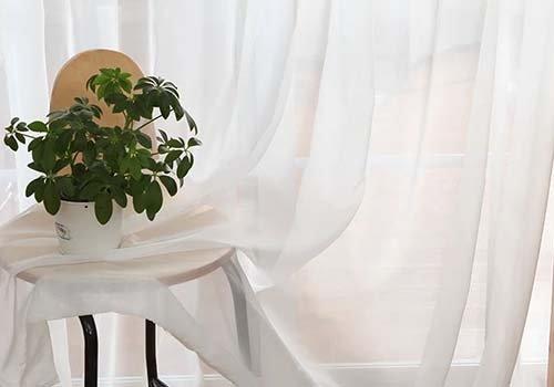 una tenda e un tavolino con sopra una pianta