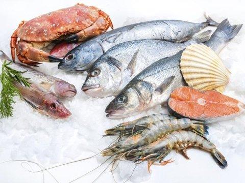 Vendita all'ingrosso di pesce interno e a tranci