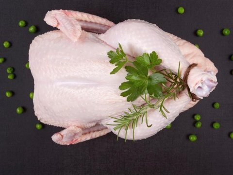 Vendita ingrosso carne avicola