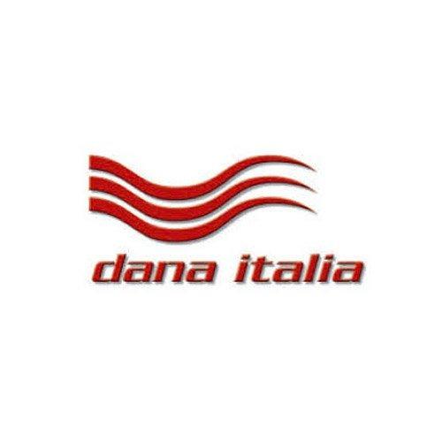 danaitalia-logo