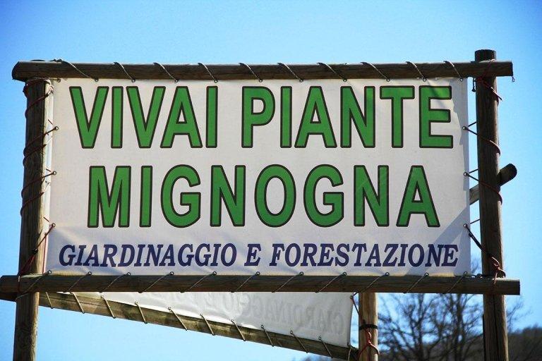 Vivai piante Mignogna