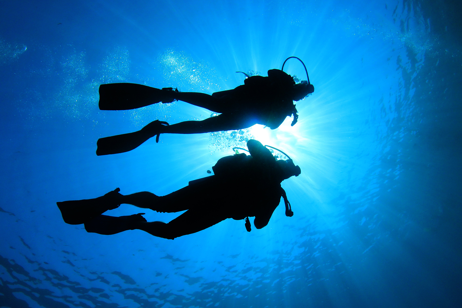 Rec and tek scuba shop hamilton burlington st catharines - Dive in scuba ...
