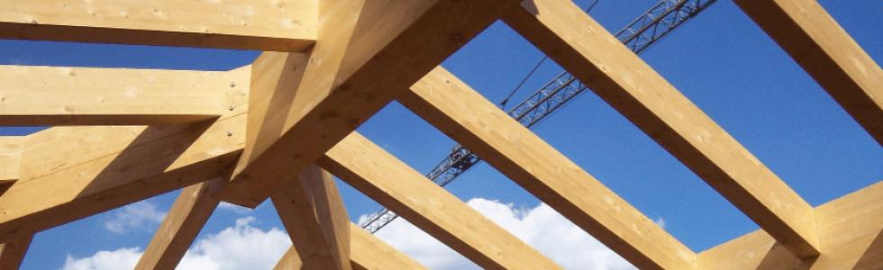 Strutture in legno, tetti
