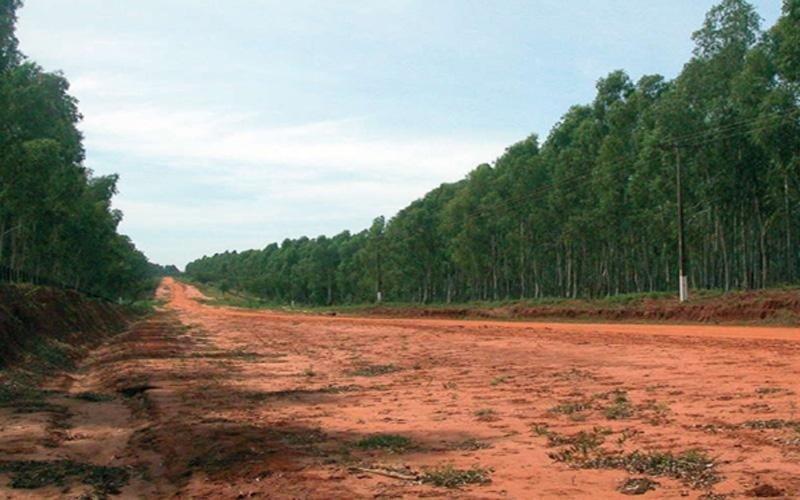 Zero deforestation law
