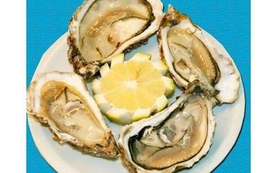 antipasto ostriche e molluschi