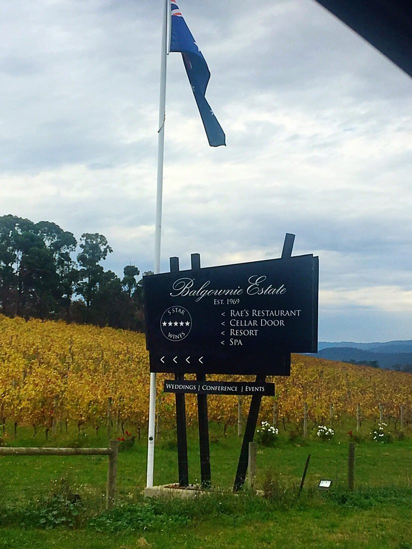 Chauffeured Winery Day Trips