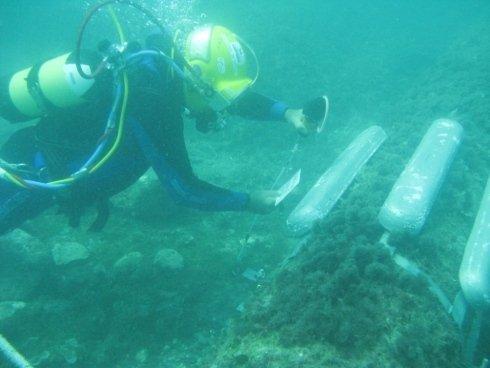 Lavori-subacquei28.jpg