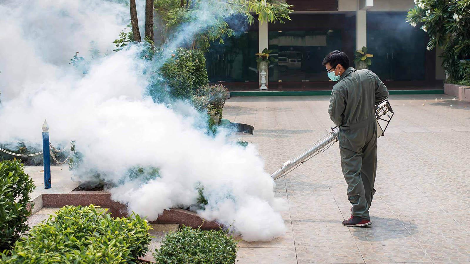 Servicios de Control de plagas de Insectos
