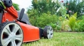 attrezzi per il giardinaggio, falciatrici, trattorini
