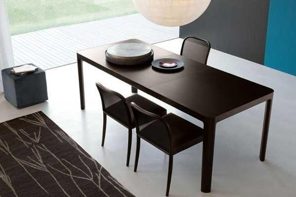 Tavolo da pranzo in legno scuro