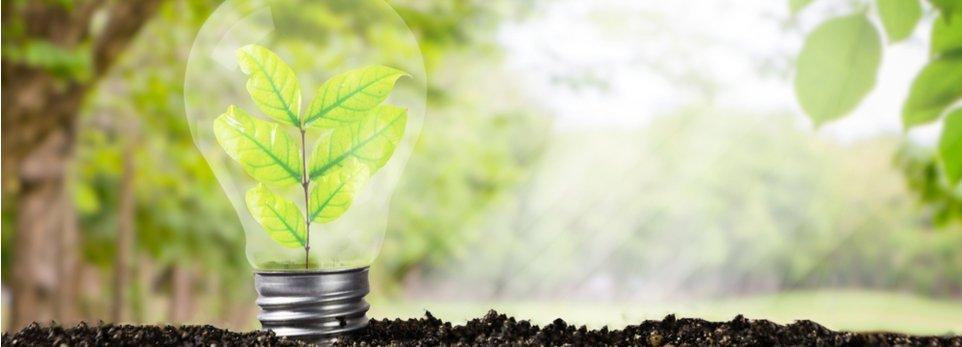 concetto astratto di ecosostenibilità