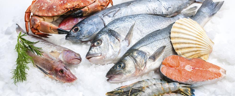 Vari pesci, salmon, conchiglie dei pellegrini,gamba e granchi