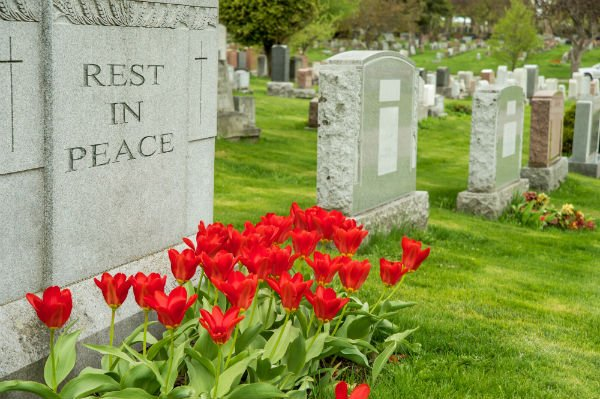 Lapida dove si legge ,riposi in pace, abbellita con molti tulipani rossi