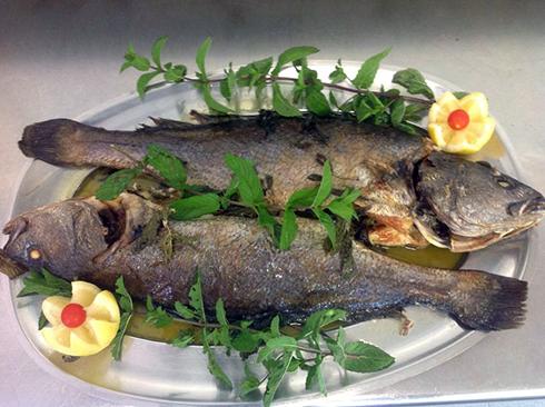 Pesce ombrina