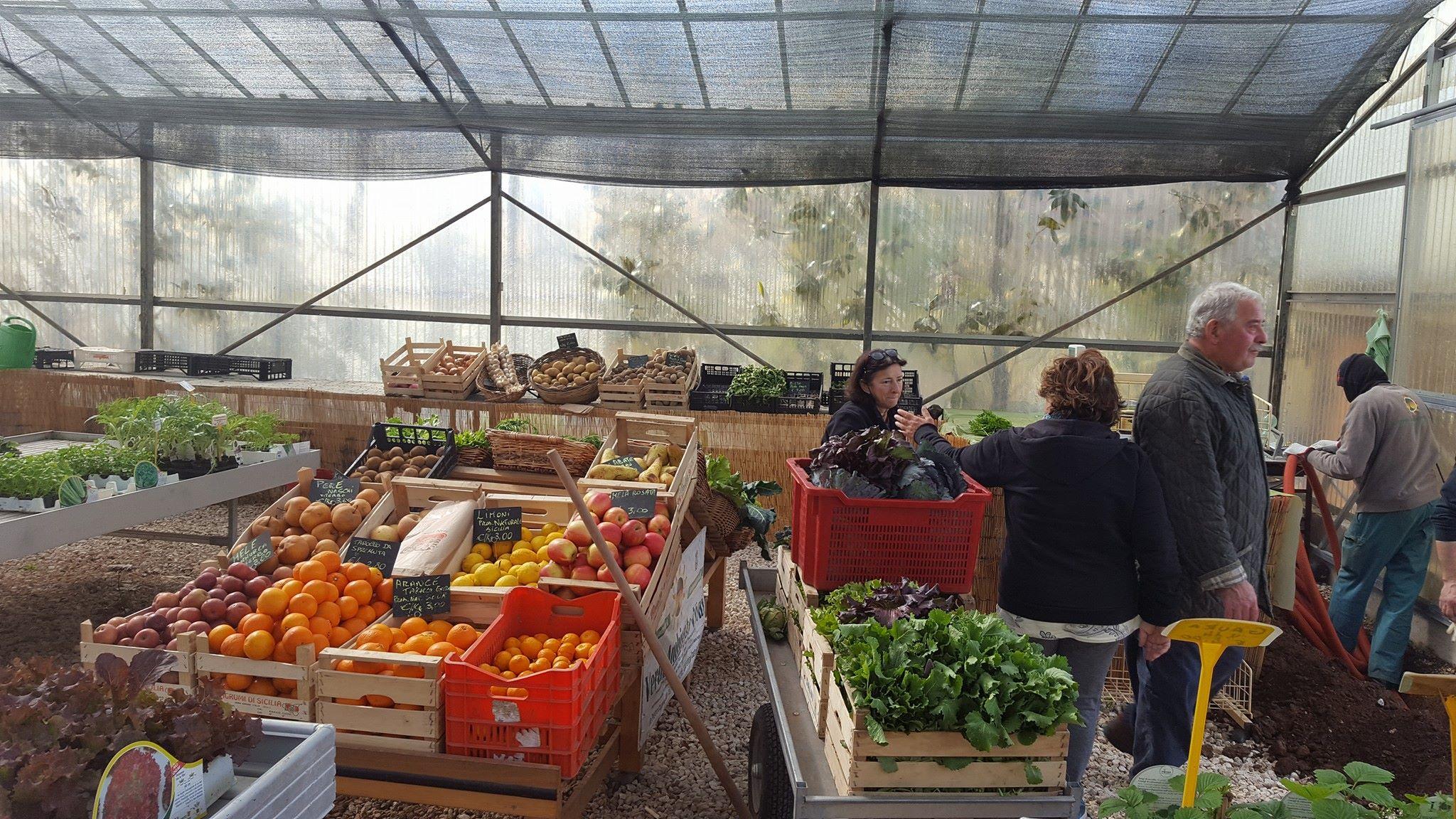 delle cassette di frutta e verdura e delle persone
