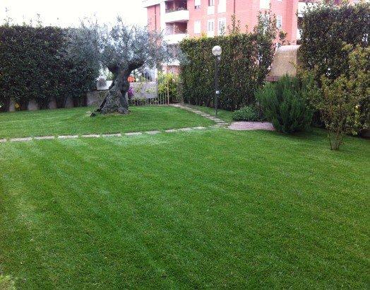 un giardino privato con degli alberi
