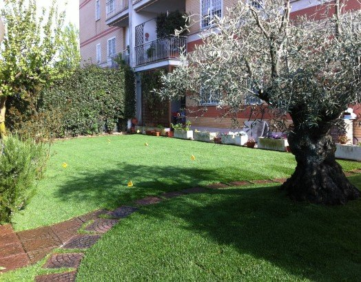 giardino condominiale con degli alberi
